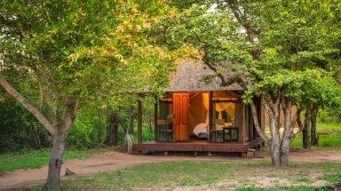 safari tent at Shindzela Bush Camp