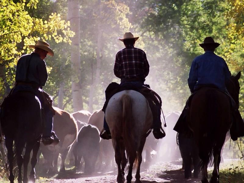 Latigo Ranch Kremmling