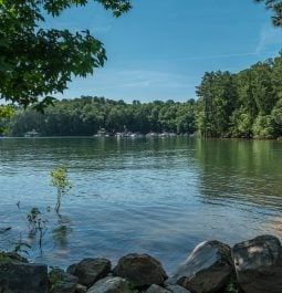 view of Lake Lanier in summer