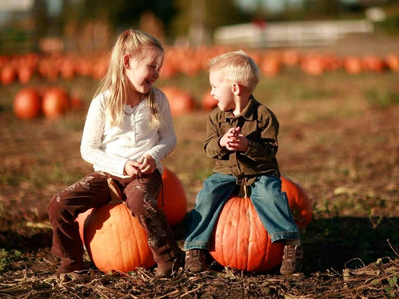 8 Best Places for Fall Fun in Georgia