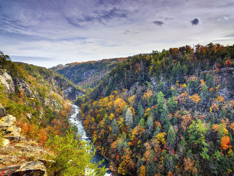 9 Most Beautiful Places To See Fall Foliage In Georgia
