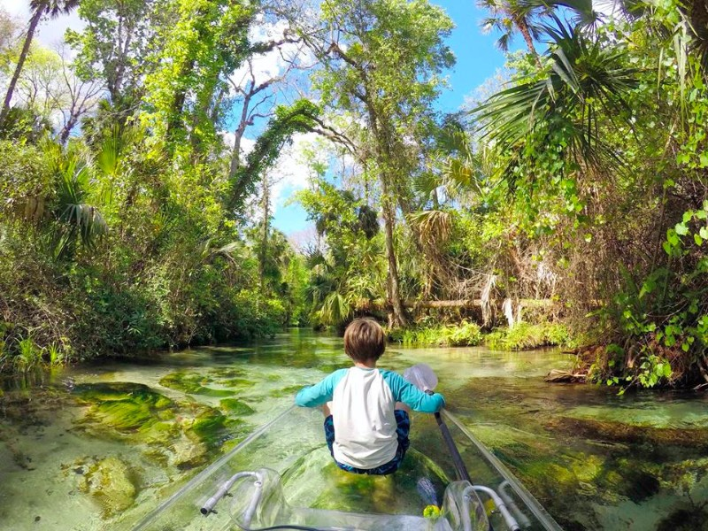 These Clear Kayaks Provide An Unforgettable Florida