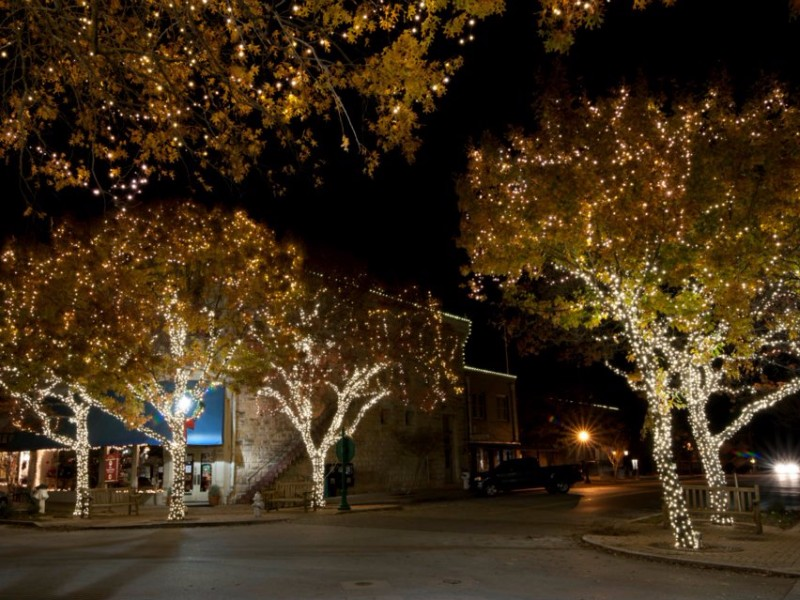 lighting trees in georgtown