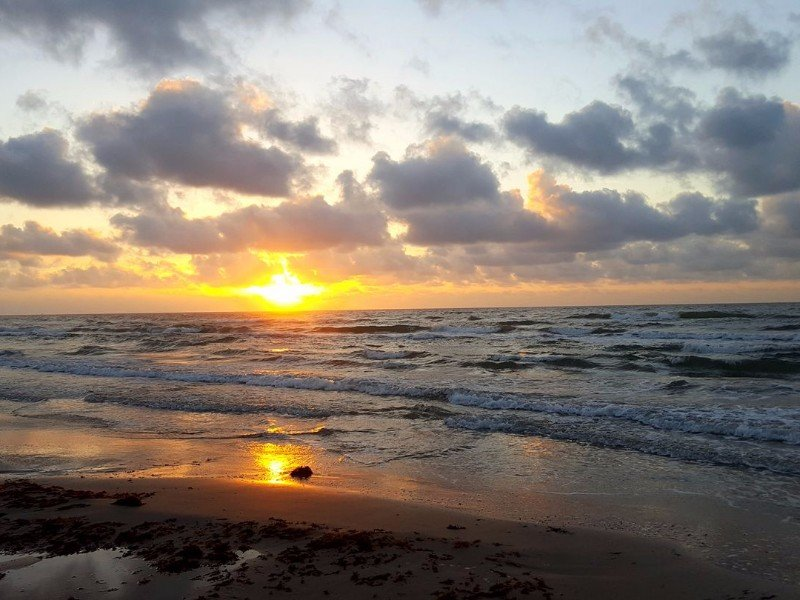 Padre Island National Seashore Attractions