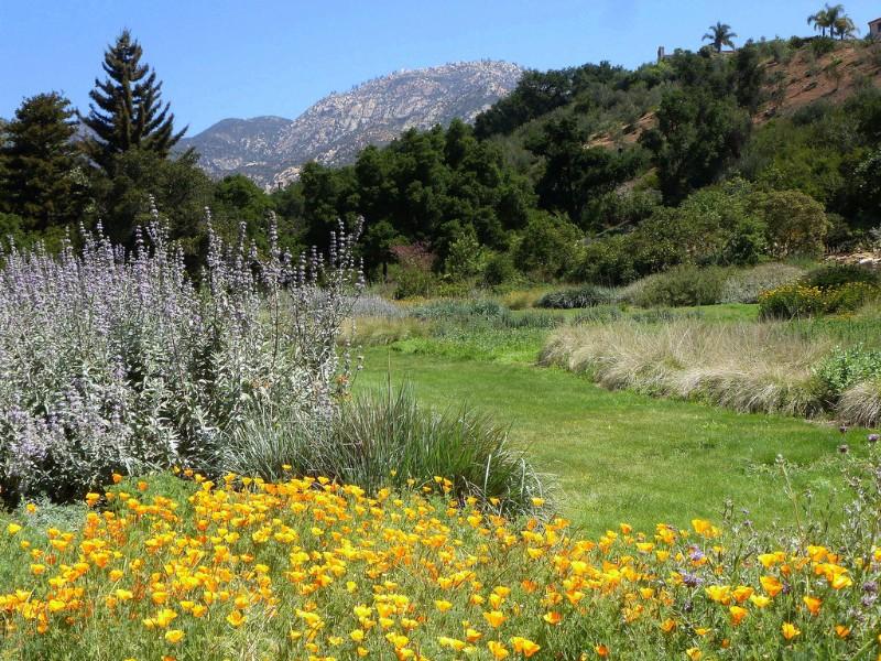 Santa Barbara Botanic Garden ...