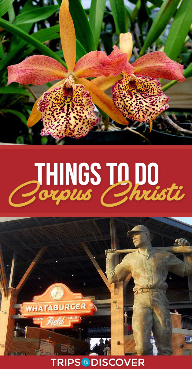 11 Best Things To Do In Corpus Christi Texas