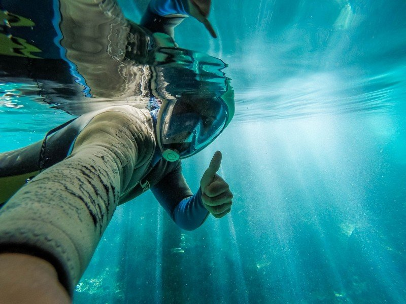 Image result for Scuba Compare's Best Snorkel Gear And How They Can Make Your Experience Better!