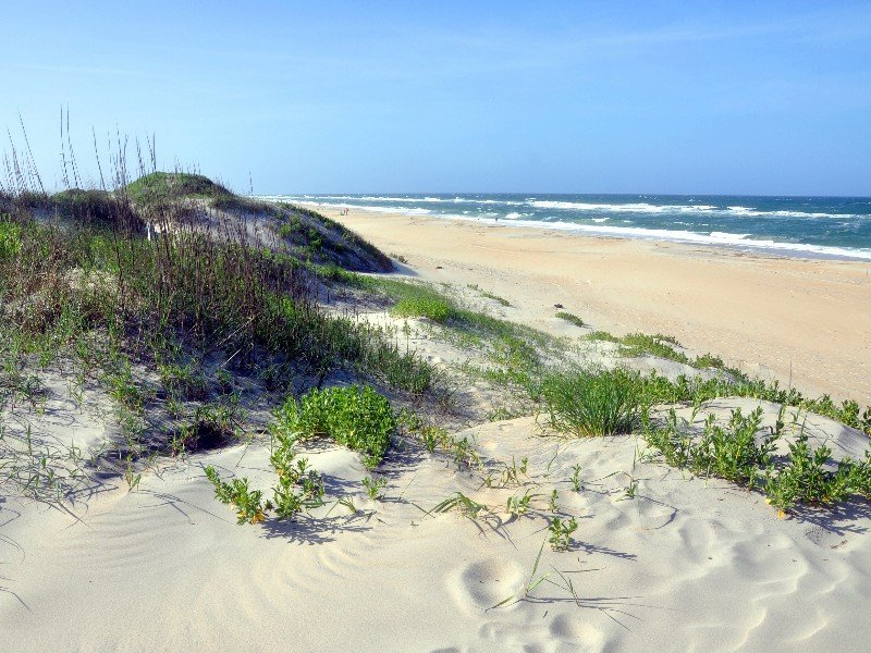 Cape Hatteras National Seas Sand Dune In On Island North Carolina