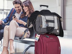 travelon bag bungee 300x225 - Amazon 2019: the best travel accessories