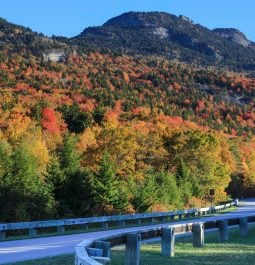 Paved road curves around mountainside that is covered with colorful fall foliage