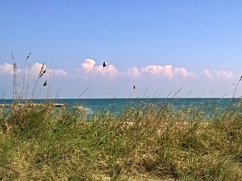 nackt sarasota beach