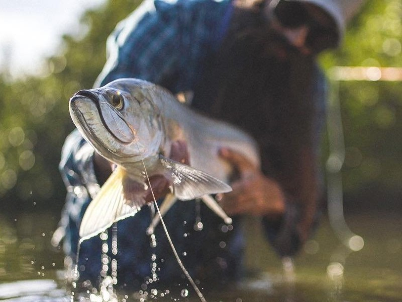Experience world-class fishing in Indian River County, FL