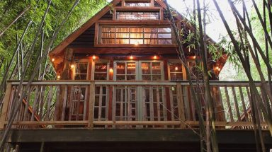 The exterior of the Atlanta Alpaca Treehouse nestled in a bamboo forest on a working farm in Atlanta