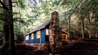 exterior of blue cabin surrounded by forest