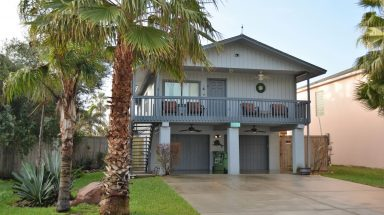 Front exterior of home with palm tree