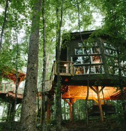 The exterior of The Majestic Treehouse with larger windows, a swing seat under the house tucked away on Bolt Farm