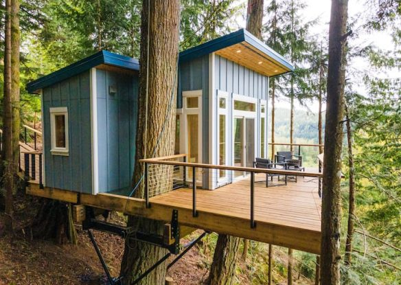 Blue treehouse perched in trees