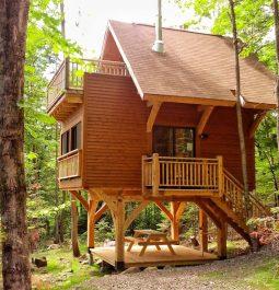 Multiple decks on the treehouse