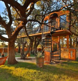 Yard in front of treehouse with porch swing