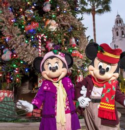 Mickey and Minnie pose in front of a Christmas Tree at Disney California Adventure park.