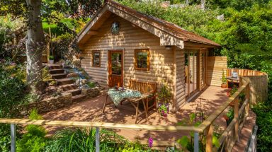 Shade trees and patio at cabin