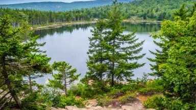 view of Bowl Lake in Acadia National Park